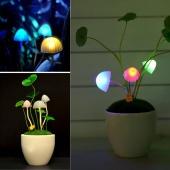 Fairytale Colorful Mini Mushroom Automatic LED Night Light Lamp Baby Kids