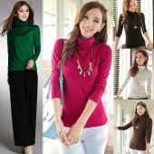 Women Fashion Autumn Winter Sweater Turtleneck Pullover Shirt Plus Size Women Long Sleeve Slim